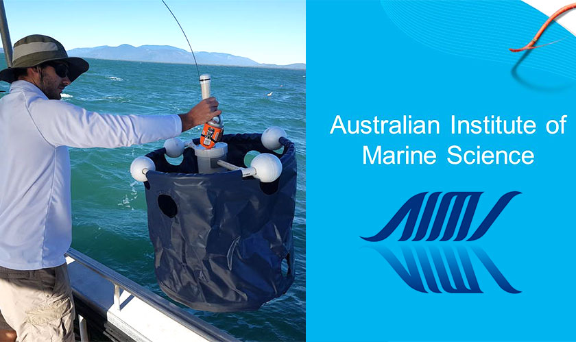 Australian Institute of Marine Science deploys IoT transmitters