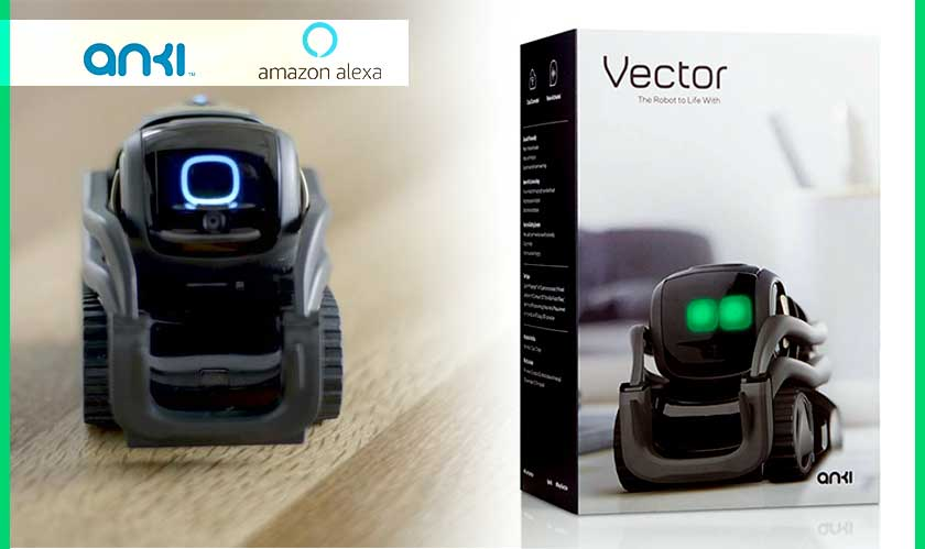 Anki's Vector robot will be getting an Echo-style blue ring soon