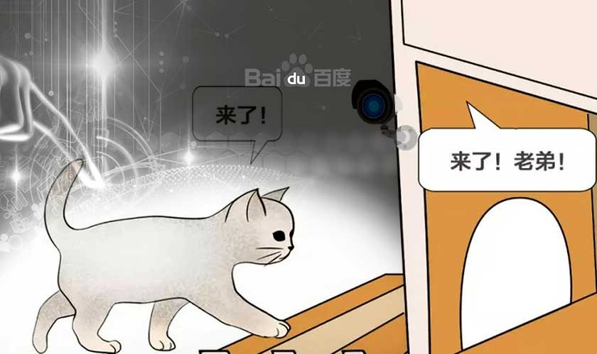 Baidu innovates a smart cat shelter for the winter