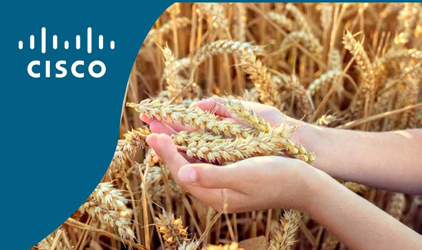 Cisco to invest in Australian agricultural IoT firm