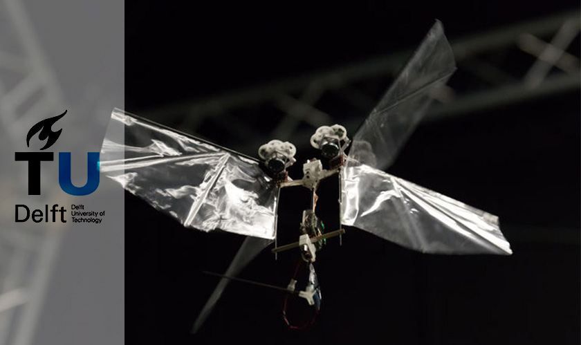 Robots that fly like insects? The DelFly Nimble robots deliver that!