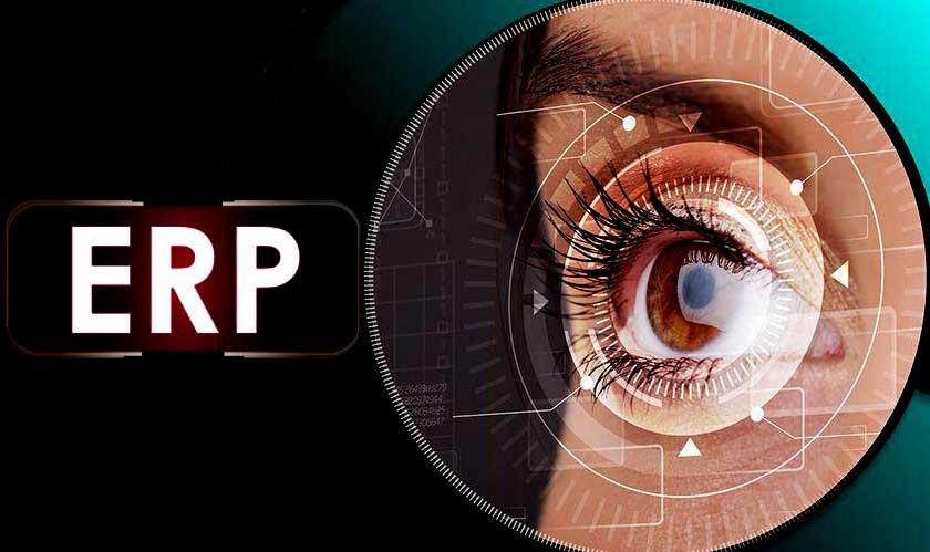 erp needs security