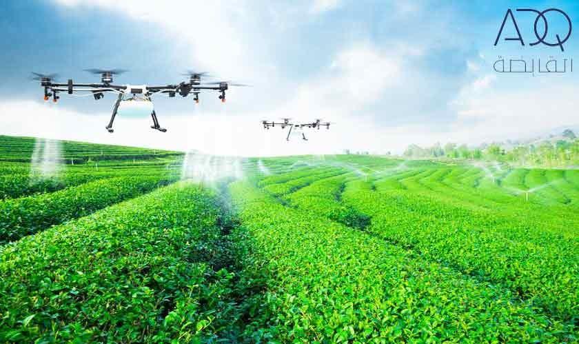 ADQ to develop a farming hub in UAE