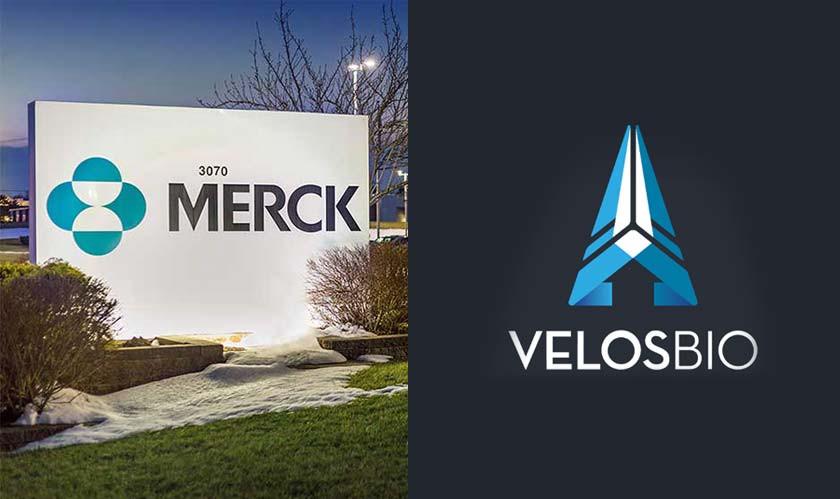 Merck is Acquiring VelosBio Inc.