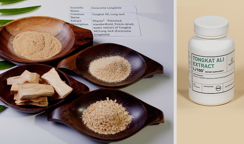 HP Ingredients will launch a new version of tongkat ali LJ100 ingredient