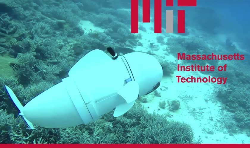 scientists invented robotic fish