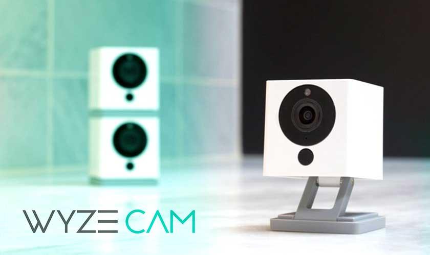 wyze security camera with echo