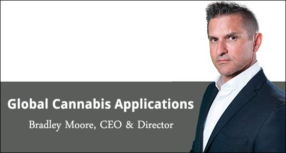 ciobulletin global cannabis applications bradley moore ceo director
