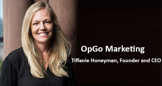 OpGo Marketing: Plan, Measure and Optimize